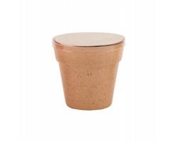 Květináč z rozložitelného materiálu PETUNIA se semínky petúnie - béžová