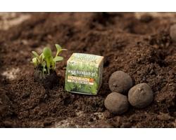 Reklamní semínka - Koule, 1 ks v papírové krabičce s celoplošným potiskem