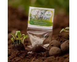 Reklamní semínka - Koule, 1 ks v průhledném PE sáčku s potištěnou etiketou