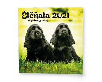Náhled produktu Nástěnný kalendář Štěňata 2021