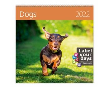 Náhled produktu Nástěnný kalendář Dogs 2022