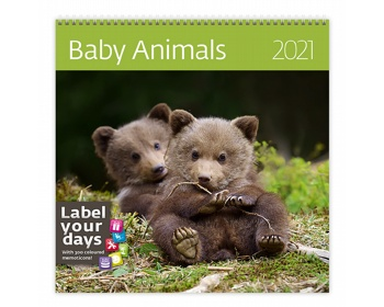 Náhled produktu Nástěnný kalendář Baby Animals 2021