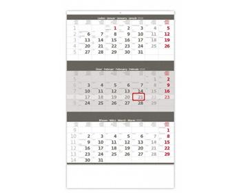 Náhled produktu Tříměsíční nástěnný kalendář 2020 - šedý