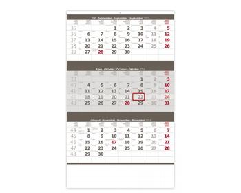 Náhled produktu Tříměsíční nástěnný kalendář 2021 - šedý