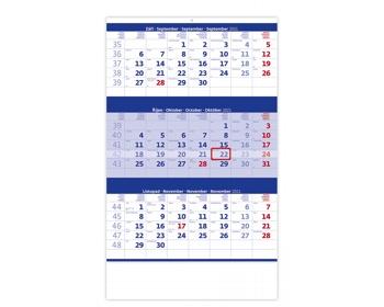 Náhled produktu Tříměsíční nástěnný kalendář 2021 - modrý