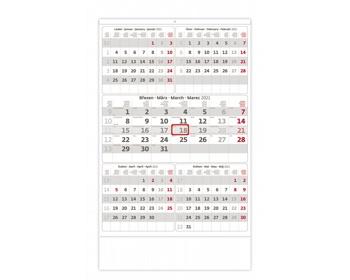 Náhled produktu Nástěnný kalendář Pětiměsíční šedý 2021