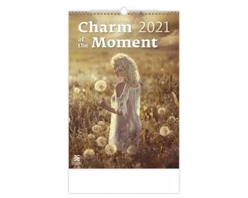 Náhled produktu Nástěnný kalendář Charm of the Moment 2021
