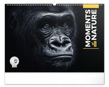Náhled produktu Nástěnný kalendář Momenty v přírodě 2021