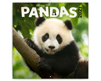 Náhled produktu Nástěnný kalendář Pandy 2021 - poznámkový - východoevropský